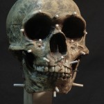Neanderthal03