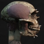 Neanderthal05