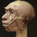 Neanderthal15