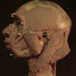 Neanderthal17