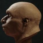 Neanderthal25